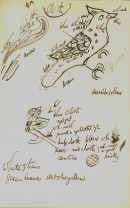 May Morris's Notes and sketches on embroidery