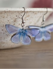 Common Blue Butterfly Earrings