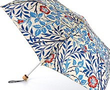 Umbrella home page lower