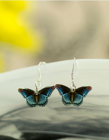 Admiral Butterfly Earrings (blue)