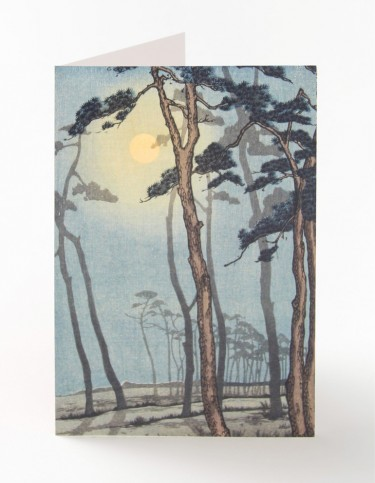 Bournemouth in Moonlight Card