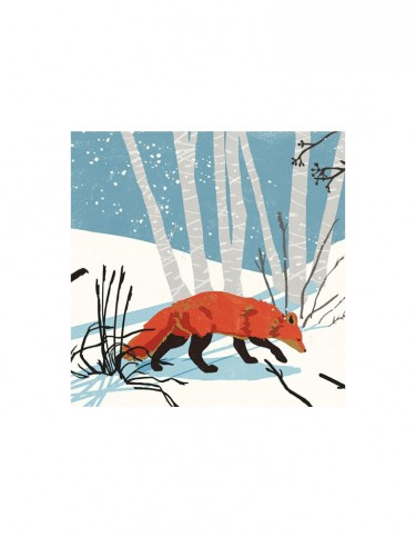 Fox Set of 8 Cards