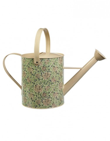 Honeysuckle watering can